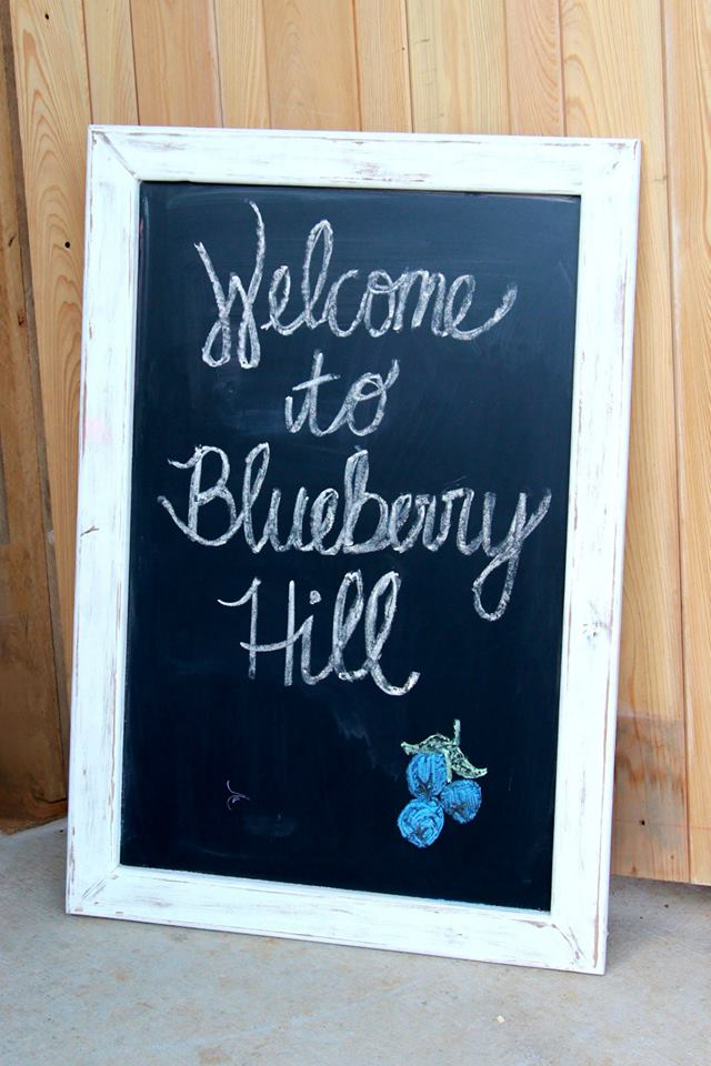 Barn wedding Price & Availability | The Barn at Blueberry Hill